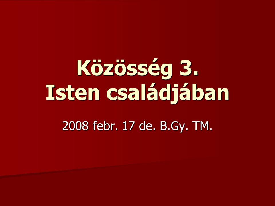Közösség 3. Isten családjában 2008 febr. 17 de. B.Gy. TM.