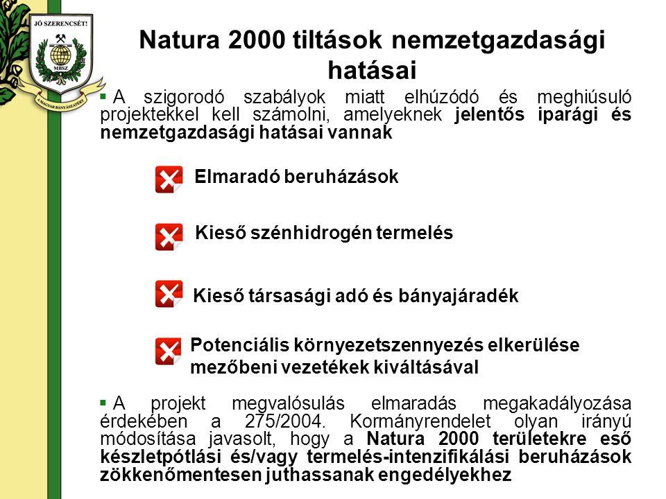 Elmaradó beruházások Kieső társasági adó és bányajáradék Kieső szénhidrogén termelés Potenciális környezetszennyezés elkerülése mezőbeni vezetékek kiváltásával Natura 2000 tiltások nemzetgazdasági hatásai  A szigorodó szabályok miatt elhúzódó és meghiúsuló projektekkel kell számolni, amelyeknek jelentős iparági és nemzetgazdasági hatásai vannak  A projekt megvalósulás elmaradás megakadályozása érdekében a 275/2004.