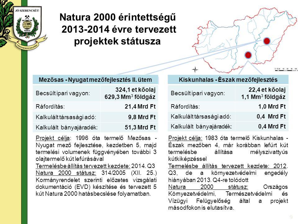 9 Projekt célja: 1996 óta termelő Mezősas - Nyugat mező fejlesztése, kezdetben 5, majd termelési volumenek függvényében további 3 olajtermelő kút lefúrásával Termelésbe állítás tervezett kezdete: 2014.