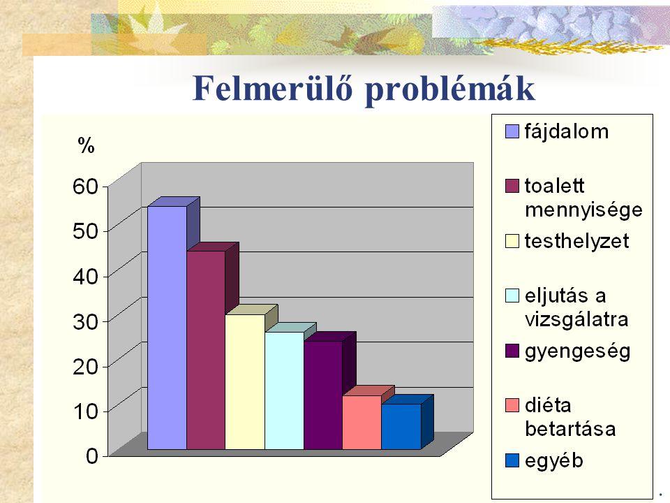 13. Felmerülő problémák