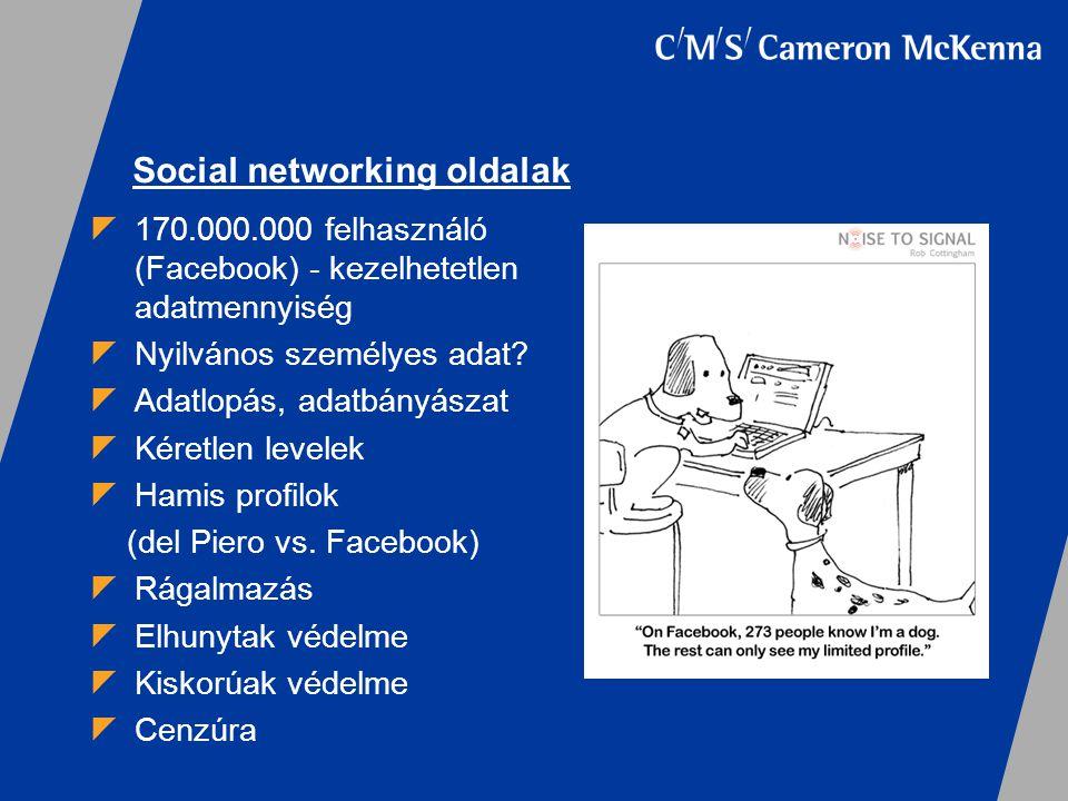 Social networking oldalak  170.000.000 felhasználó (Facebook) - kezelhetetlen adatmennyiség  Nyilvános személyes adat?  Adatlopás, adatbányászat 