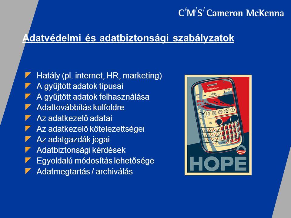  Hatály (pl. internet, HR, marketing)  A gyűjtött adatok típusai  A gyűjtött adatok felhasználása  Adattovábbítás külföldre  Az adatkezelő adatai