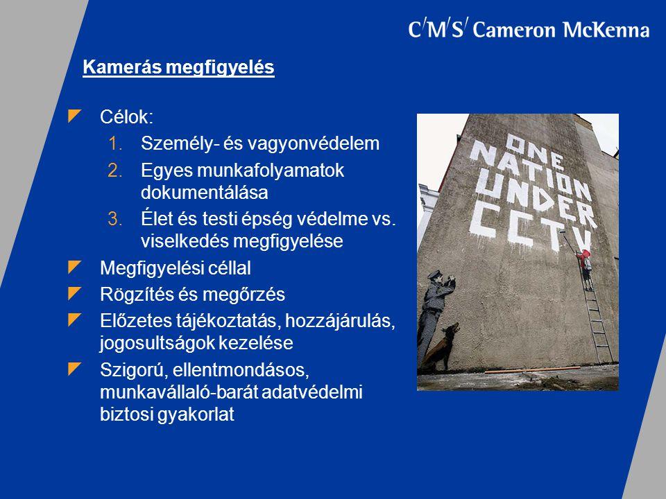 Kamerás megfigyelés  Célok: 1.Személy- és vagyonvédelem 2.Egyes munkafolyamatok dokumentálása 3.Élet és testi épség védelme vs. viselkedés megfigyelé