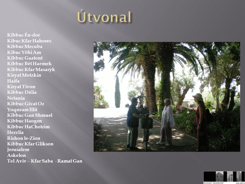 A narratív interjúk csomópontjai / tematikus egységei a következők voltak: 1.