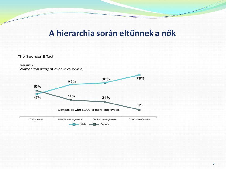 Kvóta a politikában  ENSZ 1995: a nők politikai részvételének 33%-os megvalósítását javasolja.