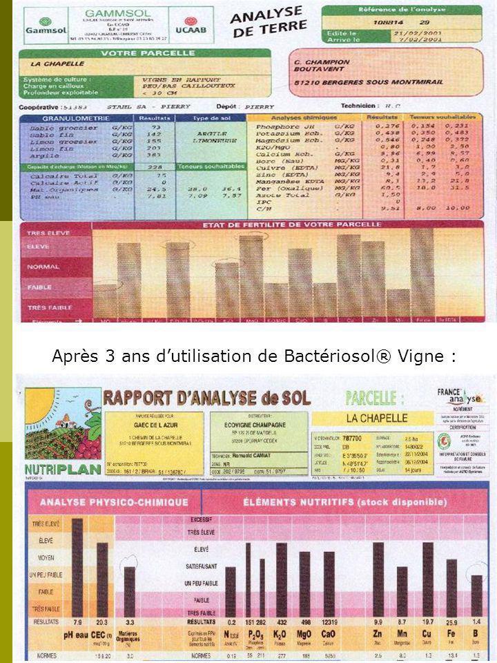 7 éve, mikor elkezdtem használni a Bactériosol®-t a szőlő ültetvényem sok problémával küzdött (gyengén fejlődő szőlő).