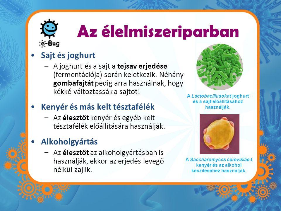 Az élelmiszeriparban •Sajt és joghurt –A joghurt és a sajt a tejsav erjedése (fermentációja) során keletkezik.