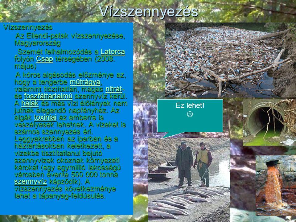 Vízszennyezés Vízszennyezés Az Ellendi-patak vízszennyezése, Magyarország Az Ellendi-patak vízszennyezése, Magyarország Szemét felhalmozódás a Latorca folyón Csap térségében (2008.