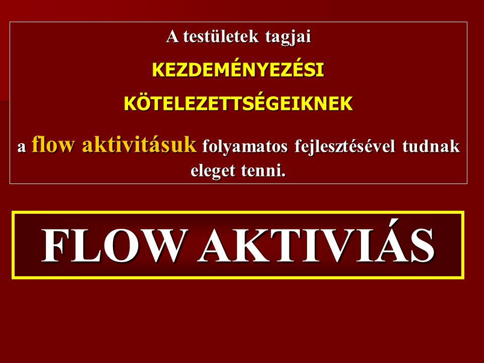 FLOW AKTIVIÁS A testületek tagjai KEZDEMÉNYEZÉSIKÖTELEZETTSÉGEIKNEK a flow aktivitásuk folyamatos fejlesztésével tudnak eleget tenni.