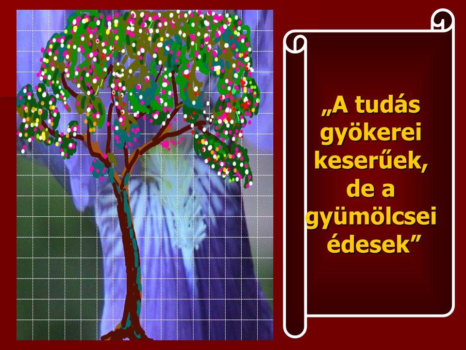 """""""A tudás gyökereikeserűek, de a gyümölcseiédesek"""