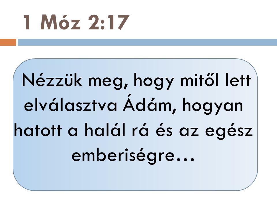 Nézzük meg, hogy mitől lett elválasztva Ádám, hogyan hatott a halál rá és az egész emberiségre… 1 Móz 2:17