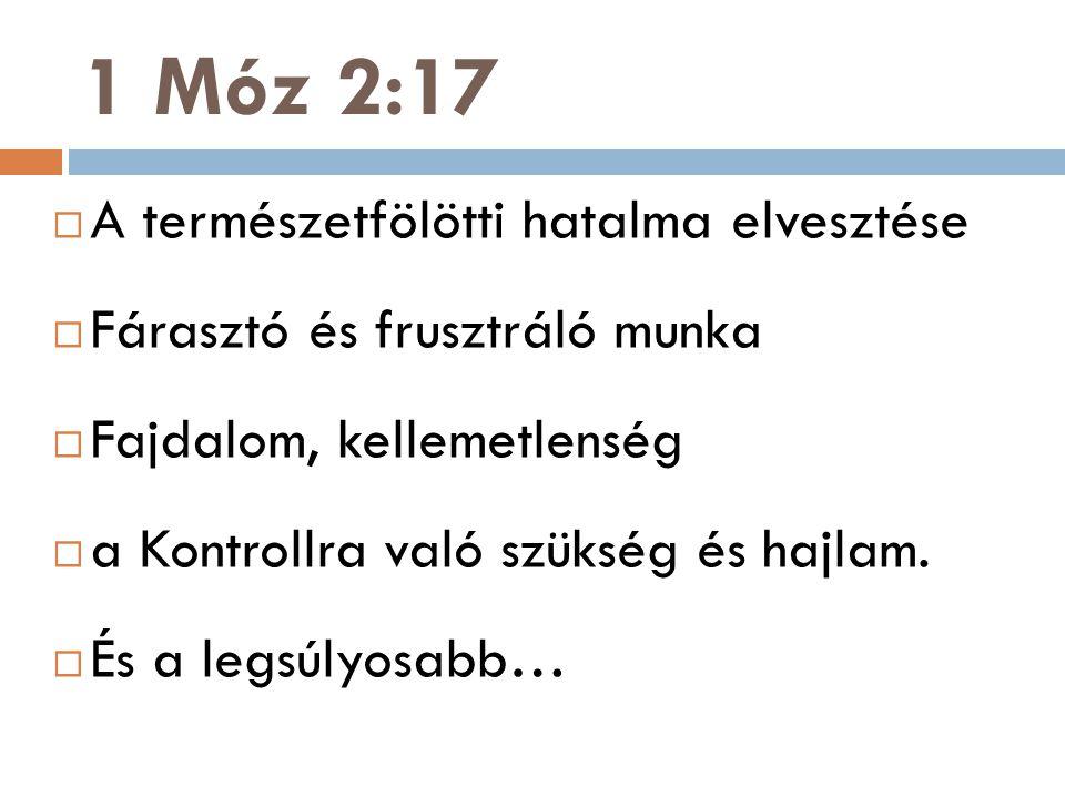 1 Móz 2:17  A természetfölötti hatalma elvesztése  Fárasztó és frusztráló munka  Fajdalom, kellemetlenség  a Kontrollra való szükség és hajlam. 