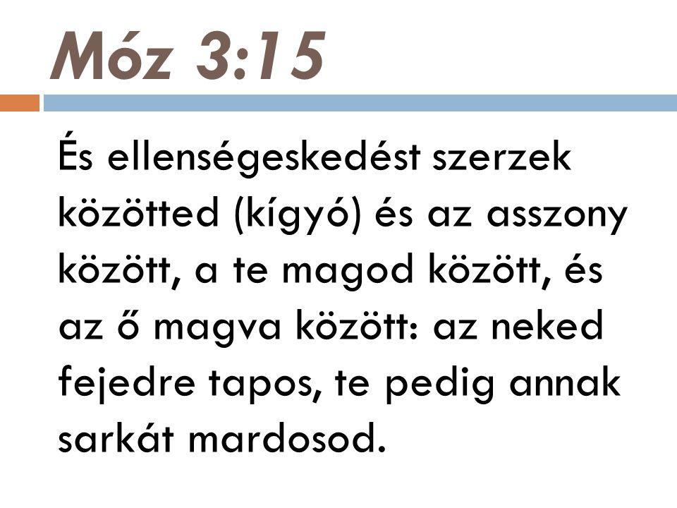 Móz 3:15 És ellenségeskedést szerzek közötted (kígyó) és az asszony között, a te magod között, és az ő magva között: az neked fejedre tapos, te pedig