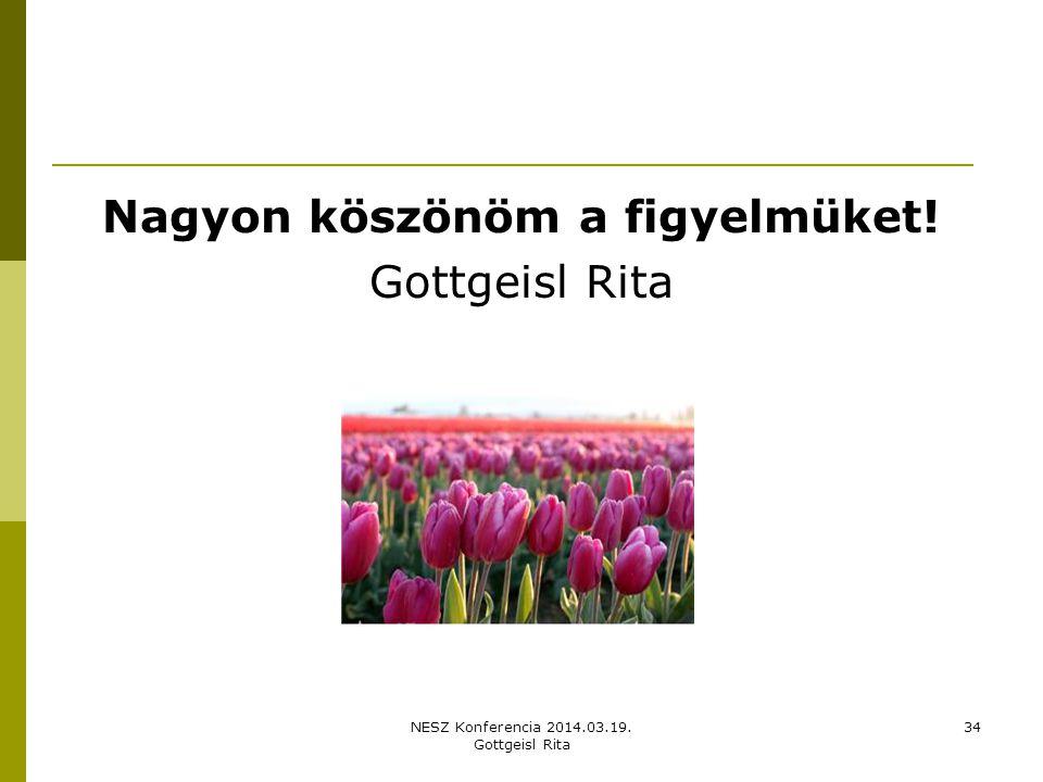 NESZ Konferencia 2014.03.19. Gottgeisl Rita 34 Nagyon köszönöm a figyelmüket! Gottgeisl Rita