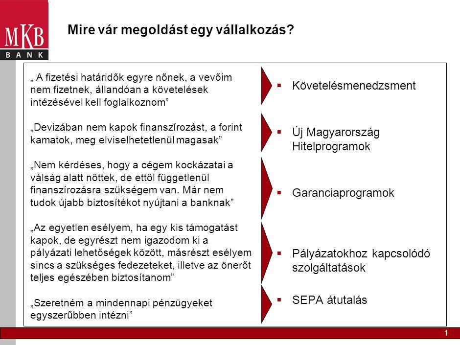 1 Mire vár megoldást egy vállalkozás?  Követelésmenedzsment  Új Magyarország Hitelprogramok  Garanciaprogramok  Pályázatokhoz kapcsolódó szolgálta