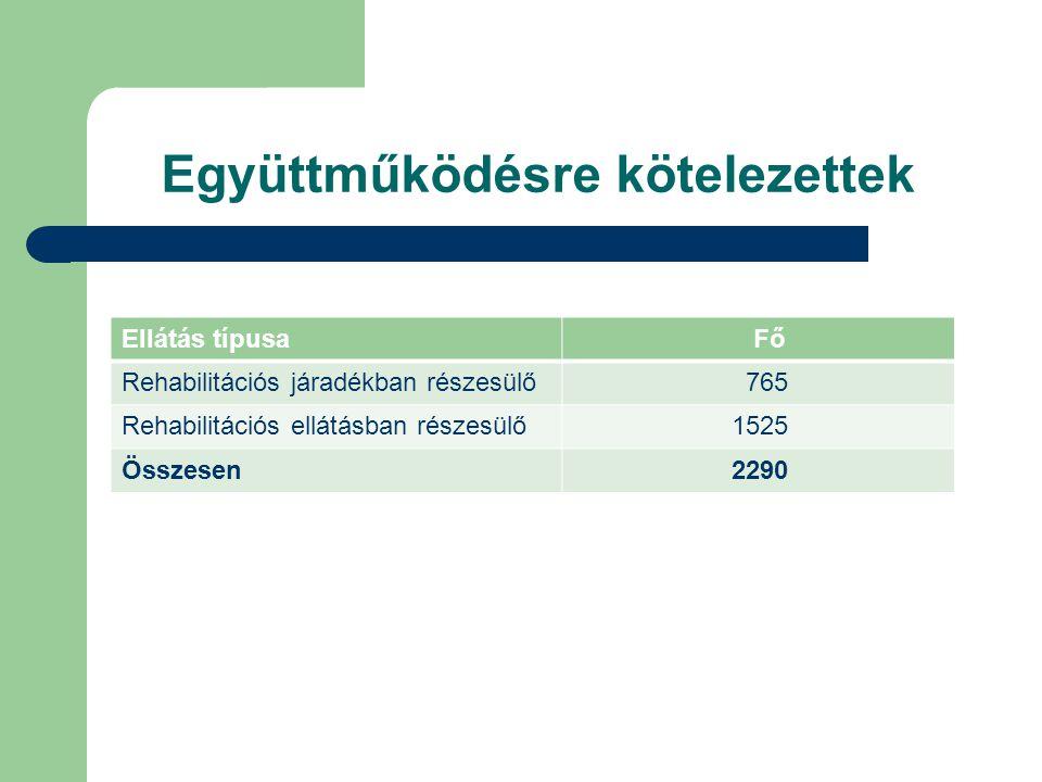 Együttműködésre kötelezettek Ellátás típusa Fő Rehabilitációs járadékban részesülő 765 Rehabilitációs ellátásban részesülő 1525 Összesen 2290