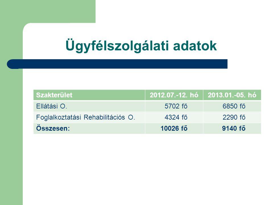 Ügyfélszolgálati adatok Szakterület2012.07.-12.hó2013.01.-05.