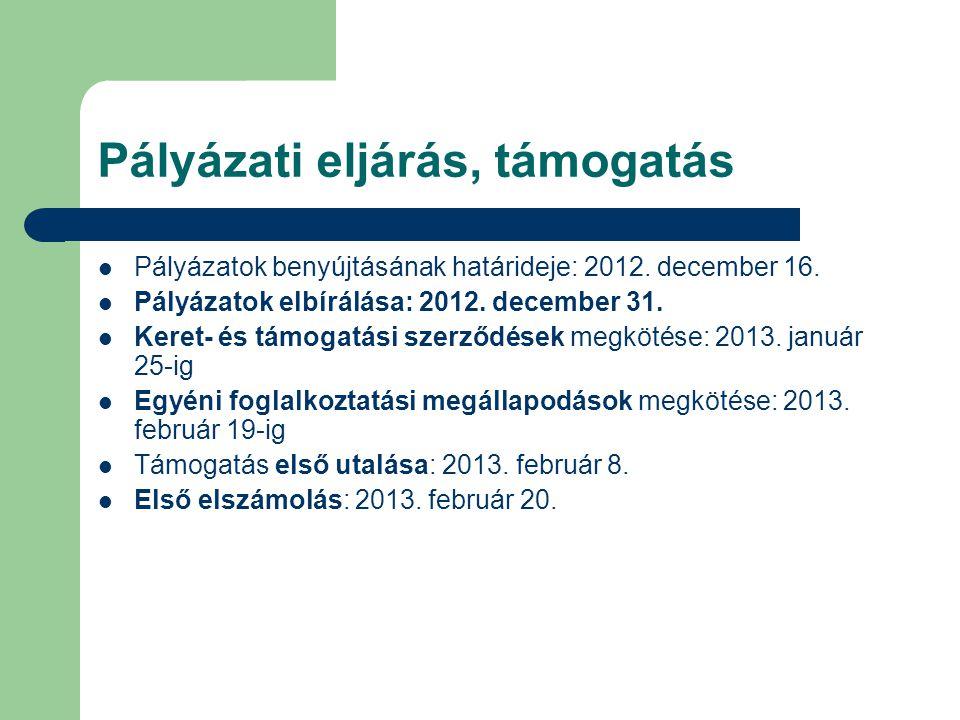 Pályázati eljárás, támogatás  Pályázatok benyújtásának határideje: 2012. december 16.  Pályázatok elbírálása: 2012. december 31.  Keret- és támogat