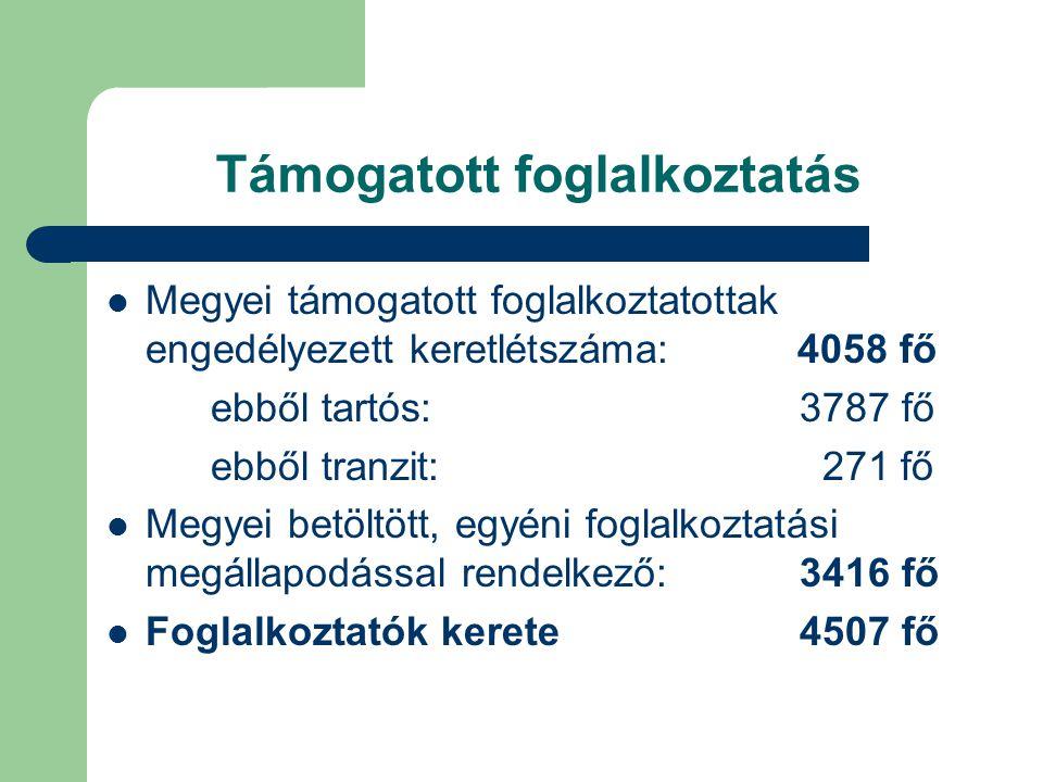 Támogatott foglalkoztatás  Megyei támogatott foglalkoztatottak engedélyezett keretlétszáma: 4058 fő ebből tartós: 3787 fő ebből tranzit: 271 fő  Megyei betöltött, egyéni foglalkoztatási megállapodással rendelkező: 3416 fő  Foglalkoztatók kerete 4507 fő