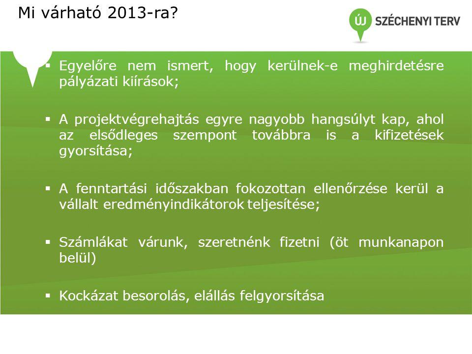Mi várható 2013-ra.