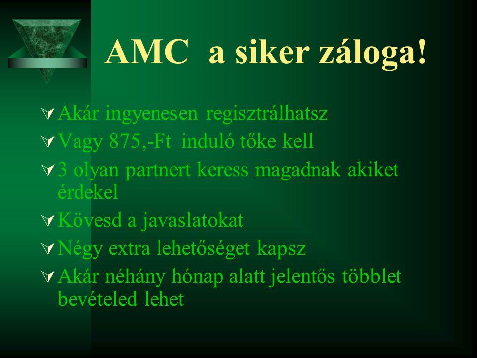 AMC a siker záloga!  Akár ingyenesen regisztrálhatsz  Vagy 875,-Ft induló tőke kell  3 olyan partnert keress magadnak akiket érdekel  Kövesd a jav