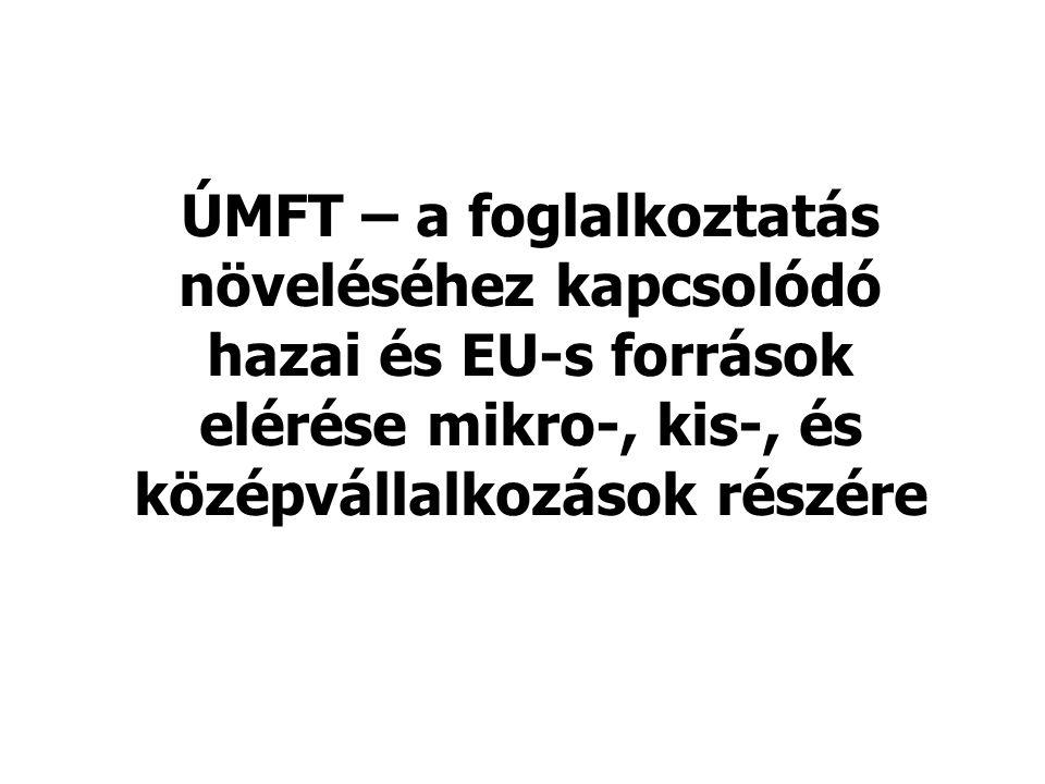 ÚMFT – a foglalkoztatás növeléséhez kapcsolódó hazai és EU-s források elérése mikro-, kis-, és középvállalkozások részére