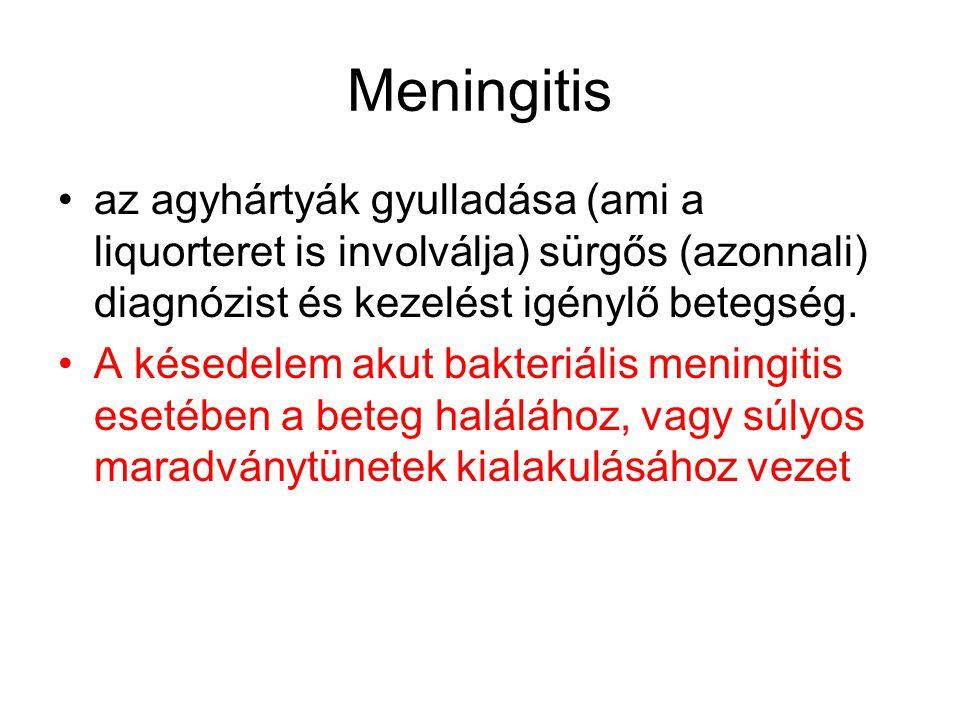 Akut bakteriális (gennyes meningitis) masszív granulocytás infiltráció