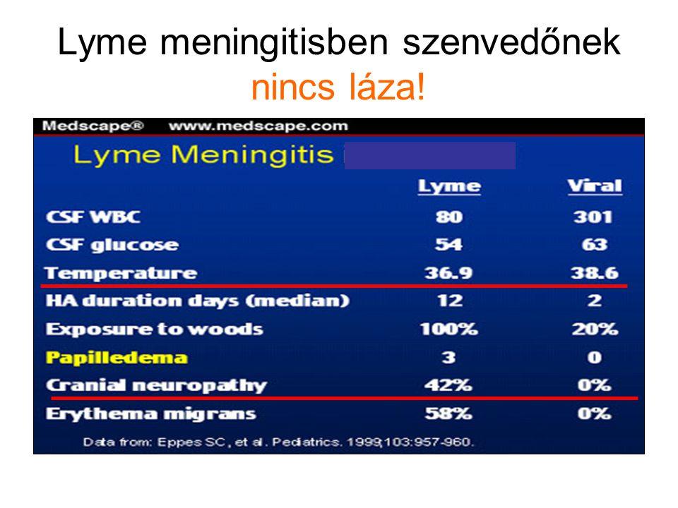 Lyme meningitisben szenvedőnek nincs láza! wwwwwwwwww
