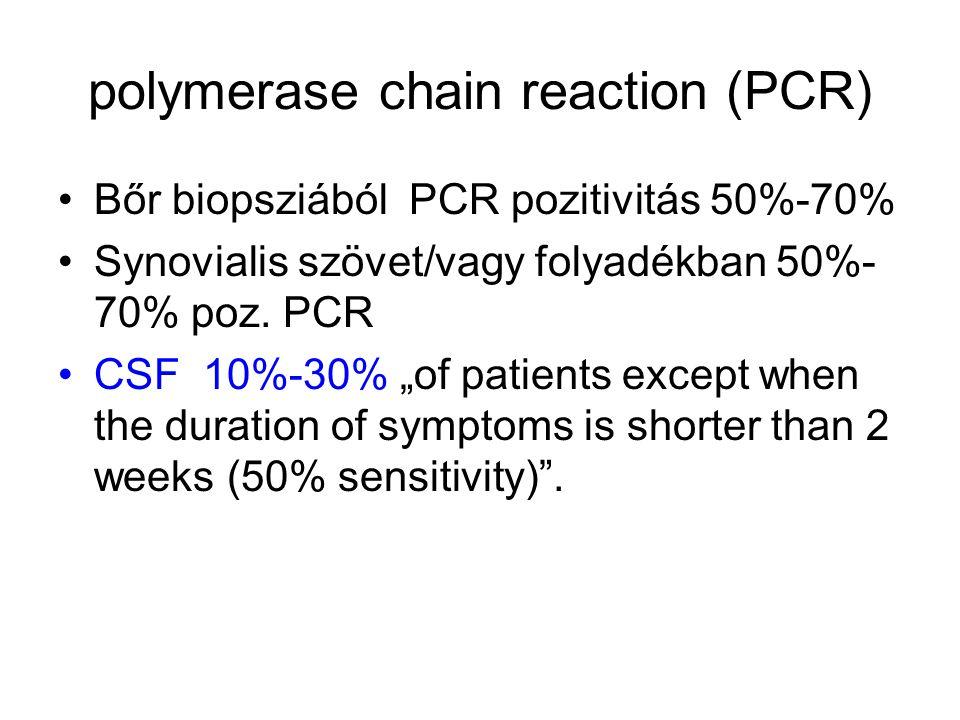 polymerase chain reaction (PCR) •Bőr biopsziából PCR pozitivitás 50%-70% •Synovialis szövet/vagy folyadékban 50%- 70% poz.