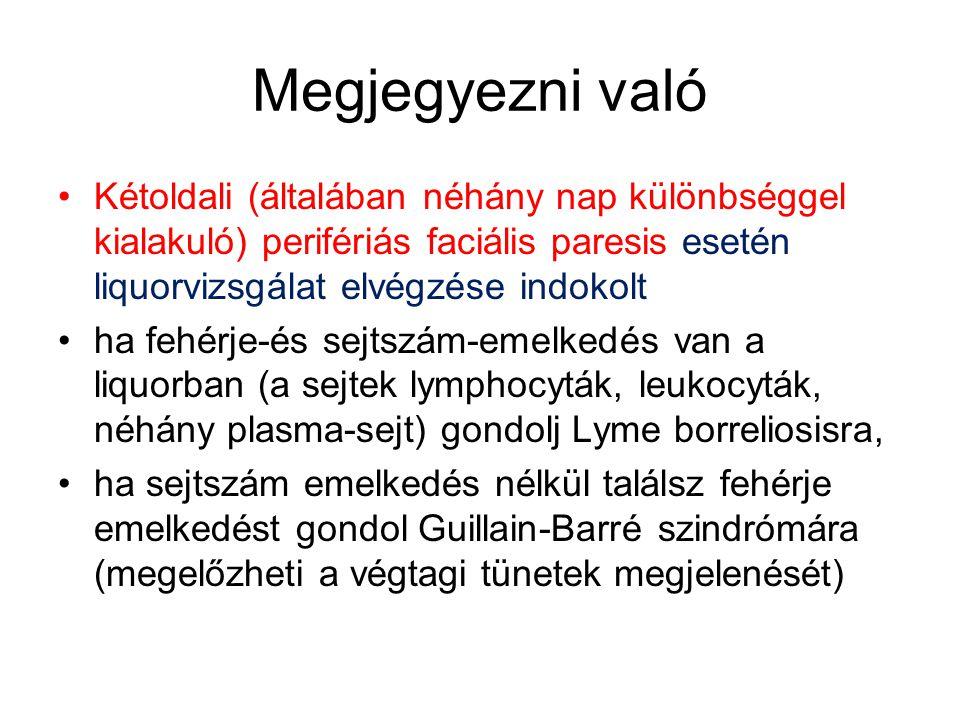 Megjegyezni való •Kétoldali (általában néhány nap különbséggel kialakuló) perifériás faciális paresis esetén liquorvizsgálat elvégzése indokolt •ha fehérje-és sejtszám-emelkedés van a liquorban (a sejtek lymphocyták, leukocyták, néhány plasma-sejt) gondolj Lyme borreliosisra, •ha sejtszám emelkedés nélkül találsz fehérje emelkedést gondol Guillain-Barré szindrómára (megelőzheti a végtagi tünetek megjelenését)