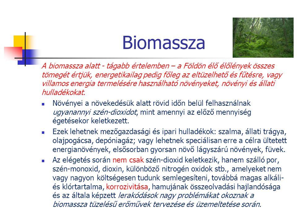 Biomassza A biomassza alatt - tágabb értelemben – a Földön élő élőlények összes tömegét értjük, energetikailag pedig főleg az eltüzelhető és fűtésre,