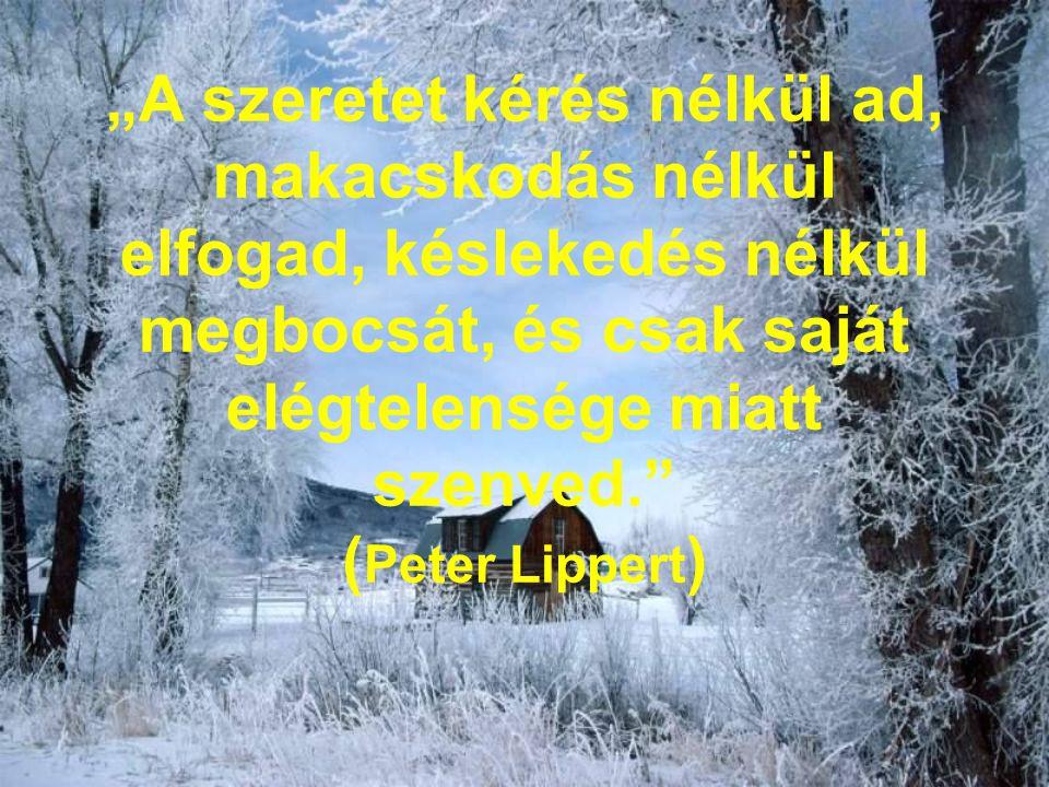 """""""A szeretet kérés nélkül ad, makacskodás nélkül elfogad, késlekedés nélkül megbocsát, és csak saját elégtelensége miatt szenved."""" ( Peter Lippert )"""