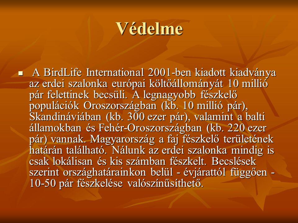 Védelme  A BirdLife International 2001-ben kiadott kiadványa az erdei szalonka európai költőállományát 10 millió pár felettinek becsüli. A legnagyobb