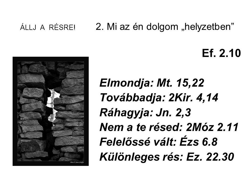 """ÁLLJ A RÉSRE! 2. Mi az én dolgom """"helyzetben"""" Ef. 2.10 Elmondja: Mt. 15,22 Továbbadja: 2Kir. 4,14 Ráhagyja: Jn. 2,3 Nem a te résed: 2Móz 2.11 Felelőss"""