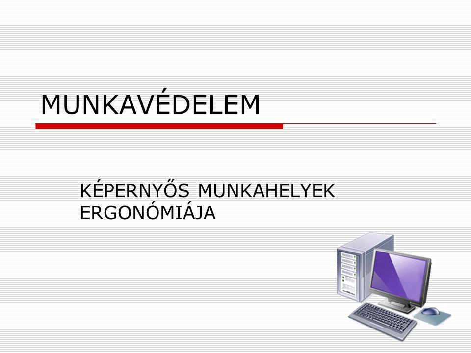 MUNKAVÉDELEM KÉPERNYŐS MUNKAHELYEK ERGONÓMIÁJA