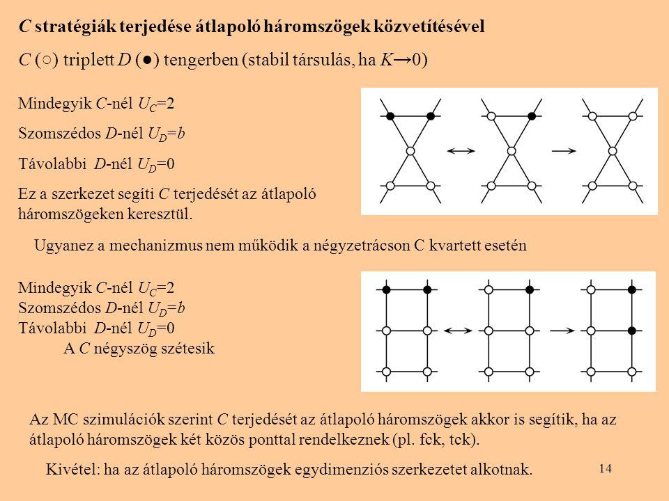 14 C stratégiák terjedése átlapoló háromszögek közvetítésével C (○) triplett D (●) tengerben (stabil társulás, ha K→0) Mindegyik C-nél U C =2 Szomszédos D-nél U D =b Távolabbi D-nél U D =0 Ez a szerkezet segíti C terjedését az átlapoló háromszögeken keresztül.