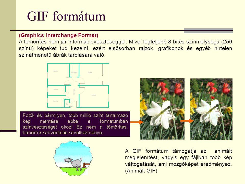 GIF formátum (Graphics Interchange Format) A tömörítés nem jár információveszteséggel. Mivel legfeljebb 8 bites színmélységű (256 színű) képeket tud k