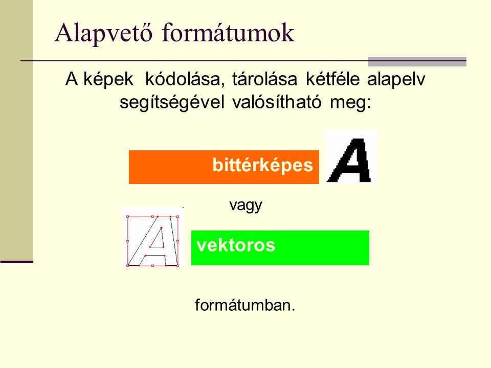 Alapvető formátumok A képek kódolása, tárolása kétféle alapelv segítségével valósítható meg: formátumban. bittérképes vektoros vagy