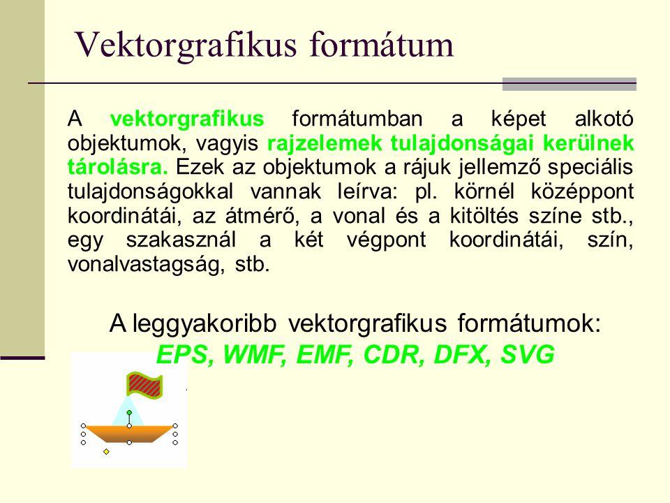 Vektorgrafikus formátum A vektorgrafikus formátumban a képet alkotó objektumok, vagyis rajzelemek tulajdonságai kerülnek tárolásra. Ezek az objektumok