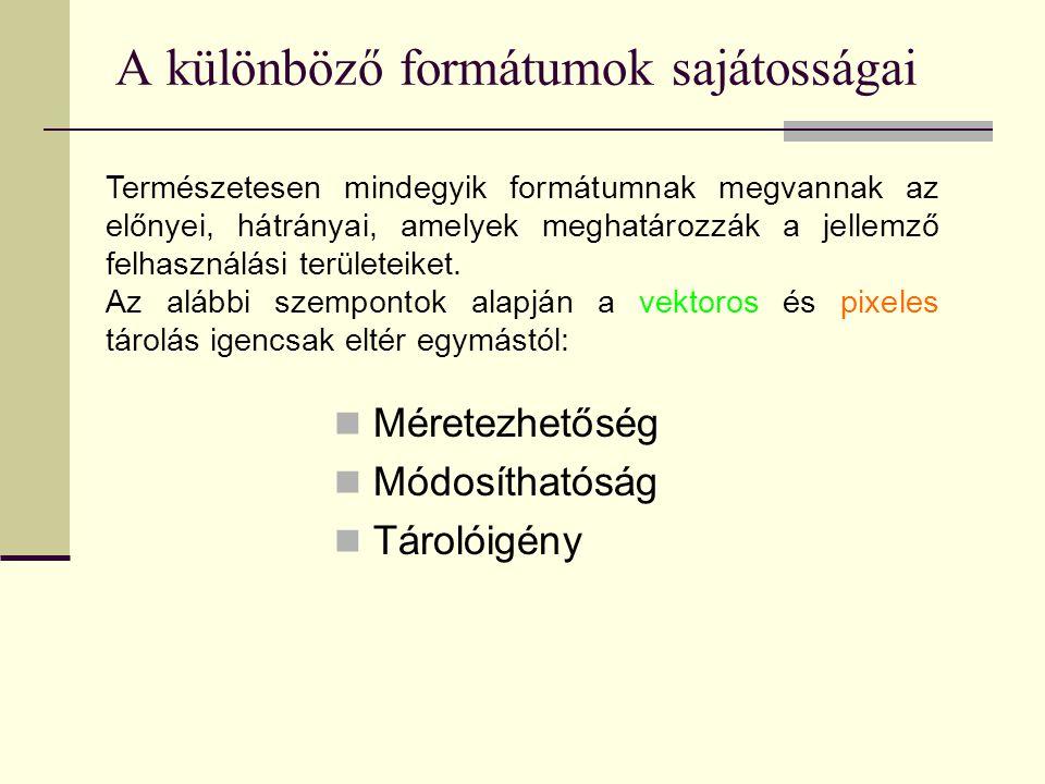 A különböző formátumok sajátosságai  Méretezhetőség  Módosíthatóság  Tárolóigény Természetesen mindegyik formátumnak megvannak az előnyei, hátránya