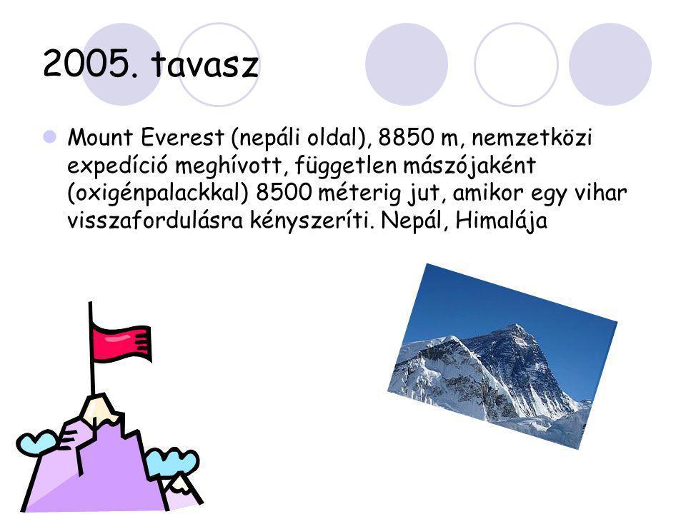 2005. tavasz  Mount Everest (nepáli oldal), 8850 m, nemzetközi expedíció meghívott, független mászójaként (oxigénpalackkal) 8500 méterig jut, amikor