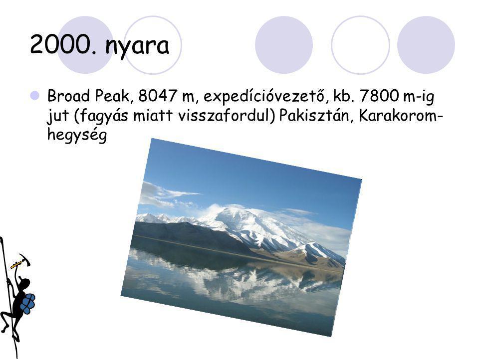 2000. nyara  Broad Peak, 8047 m, expedícióvezető, kb. 7800 m-ig jut (fagyás miatt visszafordul) Pakisztán, Karakorom- hegység
