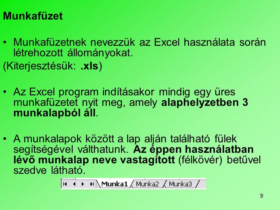 9 Munkafüzet •Munkafüzetnek nevezzük az Excel használata során létrehozott állományokat. (Kiterjesztésük:.xls) •Az Excel program indításakor mindig eg
