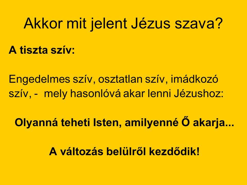 Akkor mit jelent Jézus szava? A tiszta szív: Engedelmes szív, osztatlan szív, imádkozó szív, - mely hasonlóvá akar lenni Jézushoz: Olyanná teheti Iste