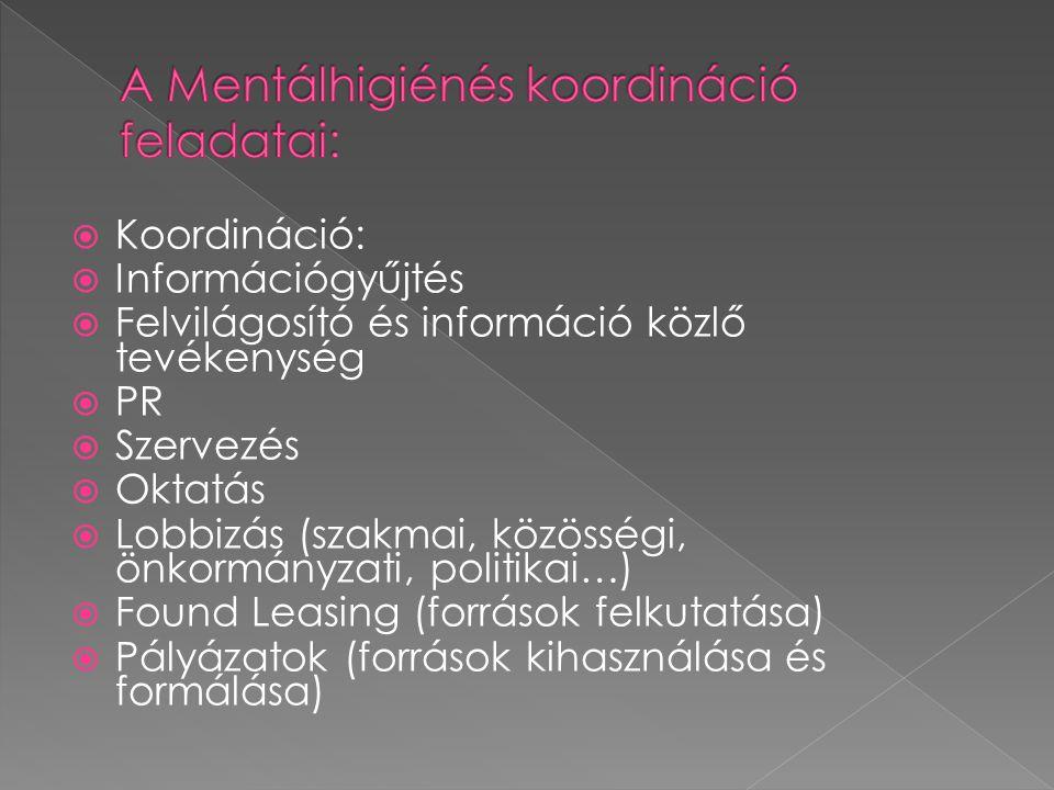  Koordináció:  Információgyűjtés  Felvilágosító és információ közlő tevékenység  PR  Szervezés  Oktatás  Lobbizás (szakmai, közösségi, önkormányzati, politikai…)  Found Leasing (források felkutatása)  Pályázatok (források kihasználása és formálása)