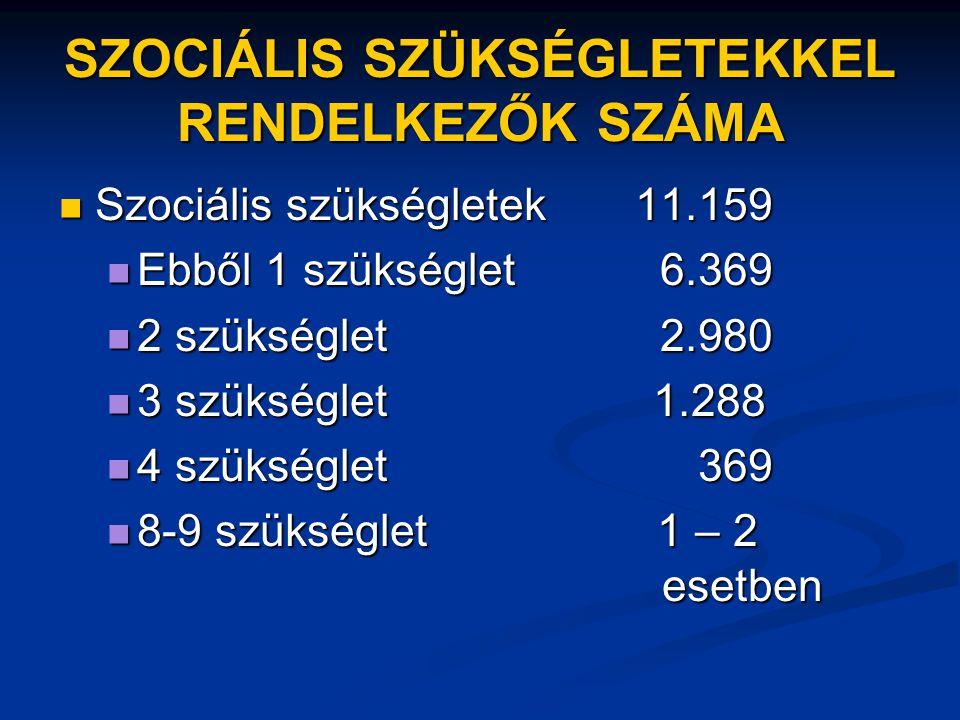 SZOCIÁLIS SZÜKSÉGLETEKKEL RENDELKEZŐK SZÁMA  Szociális szükségletek 11.159  Ebből 1 szükséglet 6.369  2 szükséglet 2.980  3 szükséglet 1.288  4 s