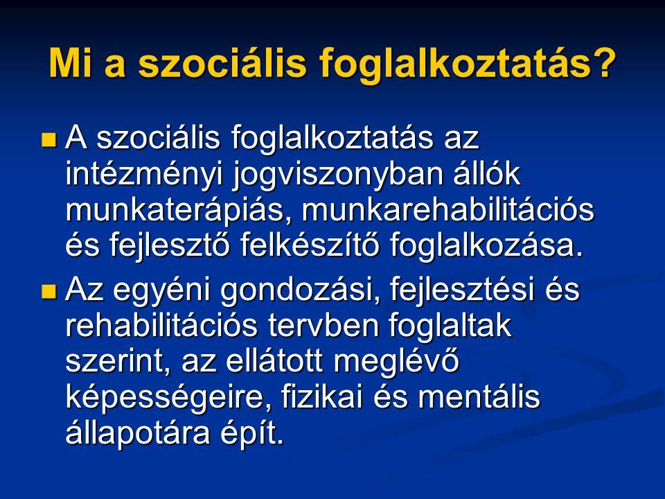 Mi a szociális foglalkoztatás?  A szociális foglalkoztatás az intézményi jogviszonyban állók munkaterápiás, munkarehabilitációs és fejlesztő felkészí