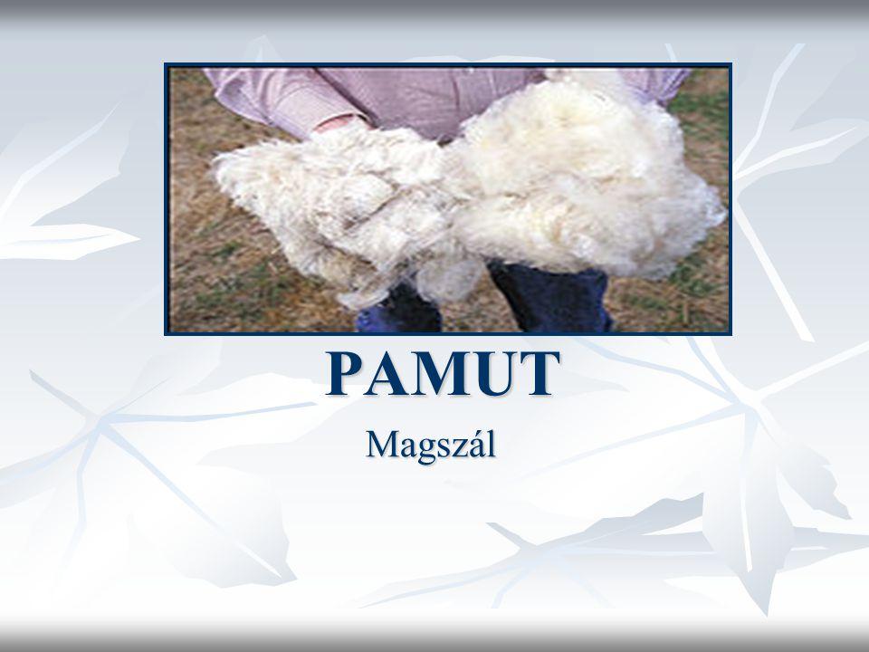 PAMUT PAMUT Magszál
