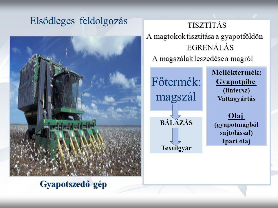 Gyapotszedő gép TISZTÍTÁS A magtokok tisztítása a gyapotföldön EGRENÁLÁS EGRENÁLÁS A magszálak leszedése a magról A magszálak leszedése a magról Főtermék: magszál Melléktermék: Gyapotpihe (lintersz) Vattagyártás Olaj (gyapotmagból sajtolással) Ipari olaj BÁLÁZÁS Textilgyár Elsődleges feldolgozás