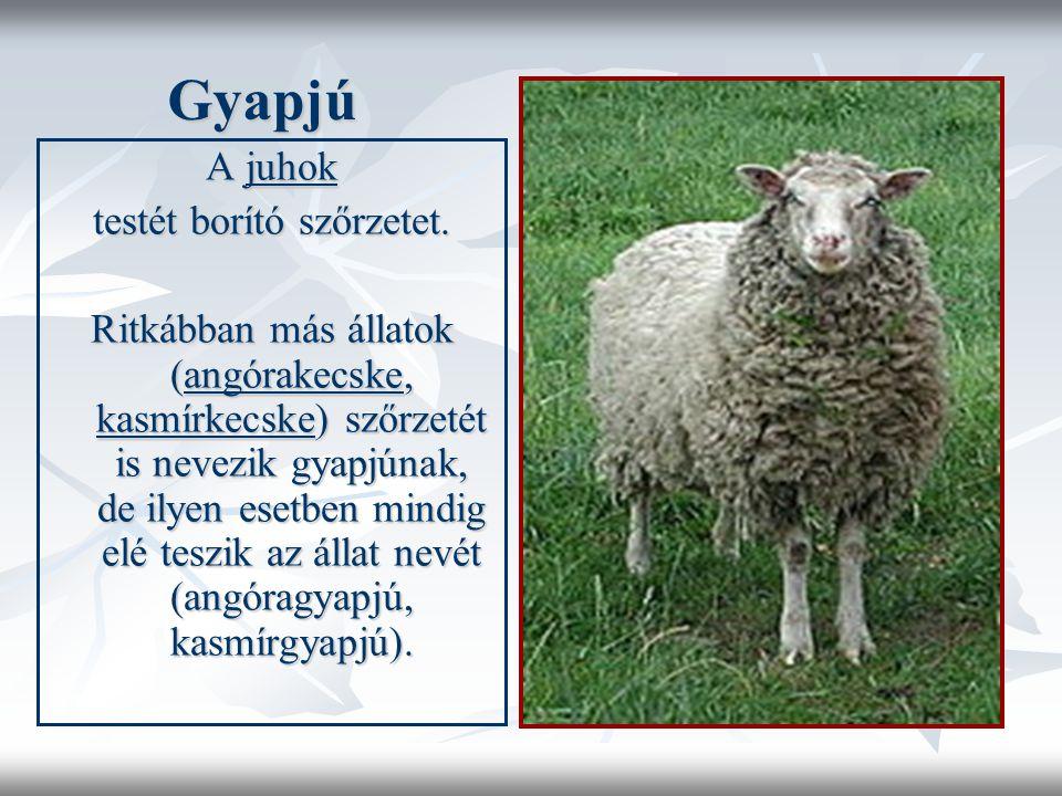 Gyapjú Gyapjú A juhok testét borító szőrzetet.